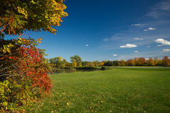 Autumn color landscape. A wide angle view of colorful autumn trees against blue skies with puffy white clouds and green grass on a  beautiful sunny day Stock Photo