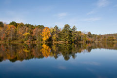 Autumn Color Leaves on Lake Stock Photos