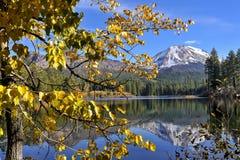 Autumn color at Manzanita Lake, Lassen Peak, Lassen Volcanic National Park. Lassen Peak and Leaves in golden, autumn color at Manzanita Lake, Lassen Volcanic Royalty Free Stock Image