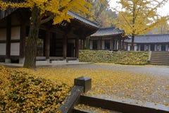 Autumn color at Namsangol folk village, Seoul, South Korea - NOVEMBER 2013 Stock Photo