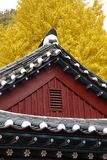 Autumn color at Namsangol folk village, Seoul, South Korea - NOVEMBER 2013 Royalty Free Stock Photo