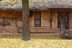 Autumn color at Namsangol folk village, Seoul, South Korea - NOVEMBER 2013 Stock Image