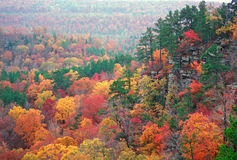 Autumn Color in the Ozarks. A hidden valley in Arkansas at the peak of fall color royalty free stock photos