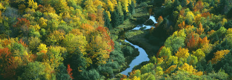Autumn color at Porcupine State Park Stock Photography