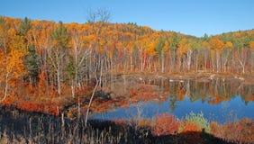 Autumn Color Reflection, Adirondacks, New York. Autumn Foliage Color Reflection, Adirondacks, south of Keene Valley, New York Royalty Free Stock Photography