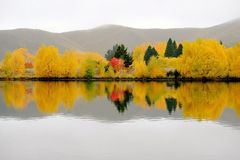 Autumn color reflections, Kawarau River, South Island, New Stock Photo