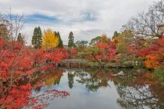 Autumn color season in Eikando temple. Royalty Free Stock Photo