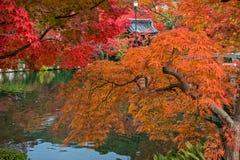 Autumn color season in Eikando temple. Royalty Free Stock Images