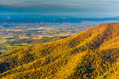 Autumn color seen from Hawksbill Mountain, in Shenandoah Nationa Royalty Free Stock Photography