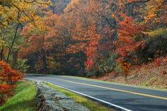 Autumn Color, Skyline Drive Stock Images