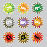 Autumn Color vector Royalty Free Stock Photo