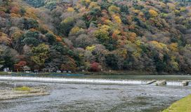 Autumn color view of Asashiyama mountain and Katsura river in Ky. Stunning autumn color view of Asashiyama mountain and Katsura river in Arashiyama, Kyoto, Japan Stock Photography