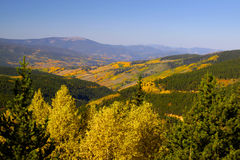 Autumn  in Colorado Royalty Free Stock Image