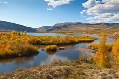 Autumn in Colorado Royalty Free Stock Image