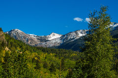 Autumn in Colorado Stock Image