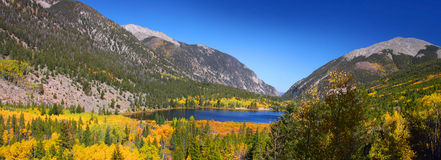 Autumn in Colorado Stock Photos