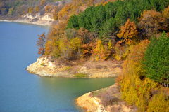 Autumn colored lakeside forest Stock Photography