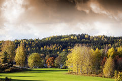 Autumn colored landscape Stock Photo