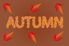 Autumn colored leaves text. Autumn inscription vector illustration Stock Images