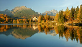 Autumn colored mountain lake - High Tatras Stock Images