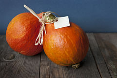 Autumn colored pumpkin on wooden table. Two orange ripe pumpkins on rustic wooden table. One has blank label for text. Shallow depth of field make an akcent on Stock Photography
