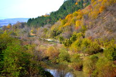 Autumn colored riverside rural scenery Stock Images