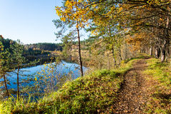 Autumn colored tourism trail in the woods Royalty Free Stock Photo