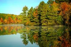 Autumn Colored trädreflexion i den klara sjön fotografering för bildbyråer