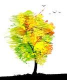Autumn colored tree with birds. Stock Photos