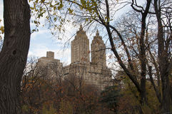 Autumn colored trees with buildings behind them. Photo shot from inside Central Park in New York Royalty Free Stock Photography