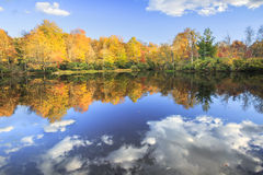 North Carolina Autumn Colored Trees Lake Water Reflection. Autumn colored trees and white clouds reflecting in the water of Julian Price Lake in North Carolina royalty free stock photography