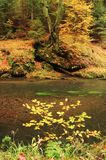 Autumn colors river Royalty Free Stock Images