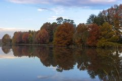 Autumn colored trees next to the pond stock image