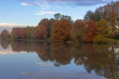 Autumn colored trees reflection on water. South Africa royalty free stock images