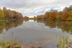 Autumn colored trees reflection on the water in the pond stock photography