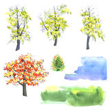 Autumn colored trees Stock Photos