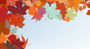 Autumn colorful background. EPS 8 Royalty Free Stock Photos