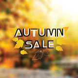 Autumn colorful background with leaves Stock Photo