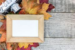 Autumn colorful dry maple leaves with empty photo frame and clas Royalty Free Stock Images