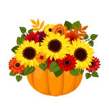 Autumn colorful flowers in pumpkin. Stock Image