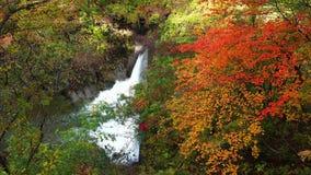 Autumn colorful foliage at the famous Naruko Gorge