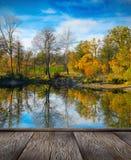 Autumn colorful foliage over lake Stock Image