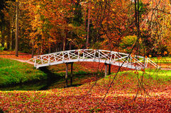 Autumn colorful landscape - wooden bridge in the autumn park among the yellowed autumn trees and fallen autumn leaves. Autumn landscape - white wooden bridge in stock image
