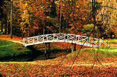 Autumn colorful landscape - wooden bridge in the autumn park among the yellowed autumn trees and fallen autumn leaves Stock Images