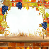 Autumn colorful leaves with grapes Stock Images
