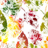 Autumn colorful leaves imprints. Seamless botanic pattern. Autumn colorful leaves imprints Royalty Free Stock Photography