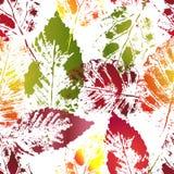 Autumn colorful leaves imprints Stock Photo