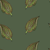 Autumn colorful leaves pattern Stock Photography