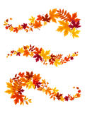 Autumn colorful leaves. Vector illustration. Royalty Free Stock Images