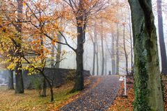 Autumn Colorful Pathway en Petersberg Koenigswinter Alemania foto de archivo libre de regalías